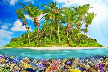 Fototapeta Morze Tropical island in Ocean and beautiful underwater world.