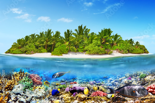 Poster Sous-marin Tropical island in Ocean and beautiful underwater world.