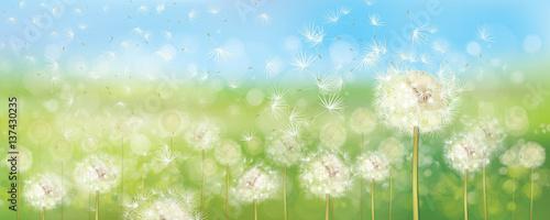 wiosenne-tlo-z-kwiatami