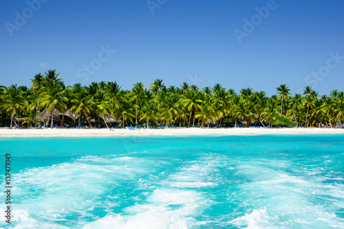Foto op Canvas Caraïben Palms coastline on caribbean beach, Island Saona