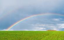 Real Rainbow In Dark Sky Over Green Field