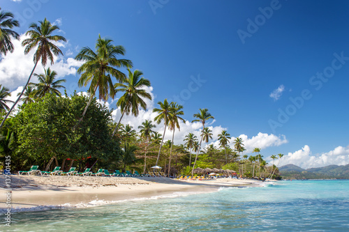 Photo Stands Turquoise stunning tropical beach Playita, Domonican Republic. Blue ocean, white sand, palm trees