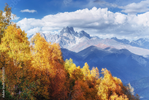 gesta-mgla-na-przeleczy-goulet-jesienny-krajobraz-gruzja