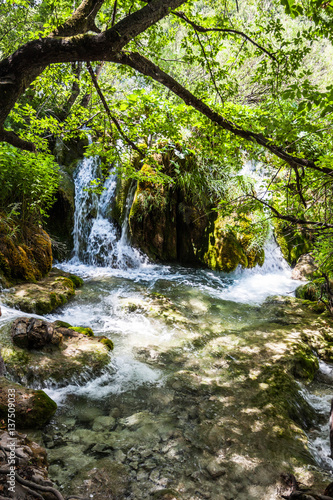 Foto op Aluminium Bergen Cascades waterfalls under the tree branches. Plitvice, National Park, Croatia