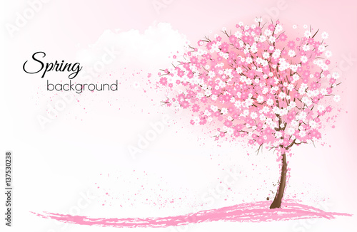 Cuadros en Lienzo Spring nature background with a pink blooming sakura tree
