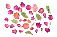 Flowers Composition Of Dried Rose Flowers. Valentine's Day. Dried Rose Petals Close-up Background