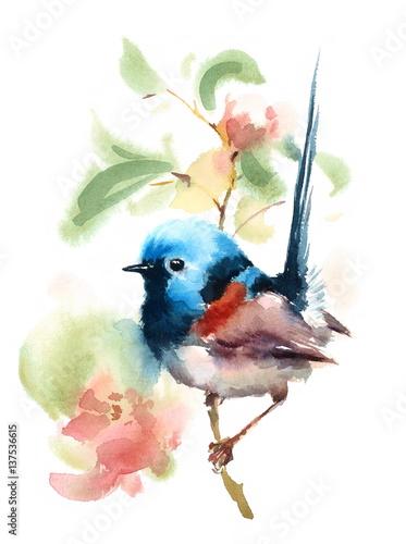 recznie-rysowany-maly-ptaszek-ptak-z-niebieska-glowa-na-galezi-akwarela