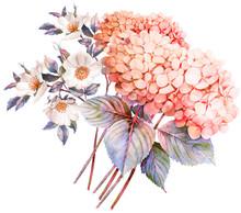 FLower Bouquet. Hydrangea And ...