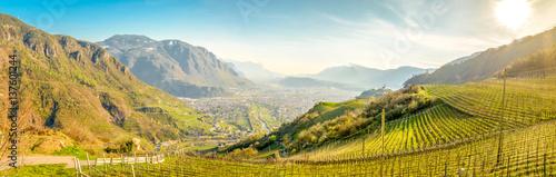 Fotografie, Obraz  Bozen Talblick Panorama
