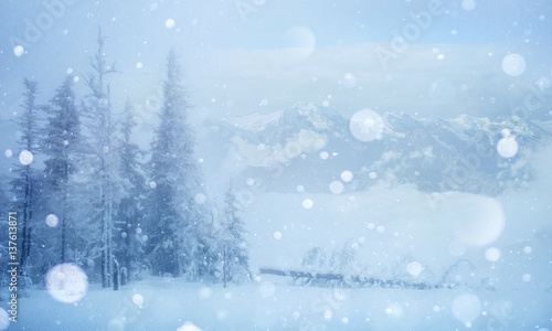 Fototapety, obrazy: Mysterious winter landscape majestic mountains in the