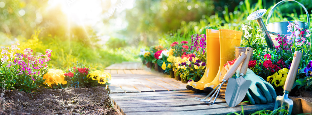 Fototapety, obrazy: Gardening - Set Of Tools For Gardener And Flowerpots In Sunny Garden
