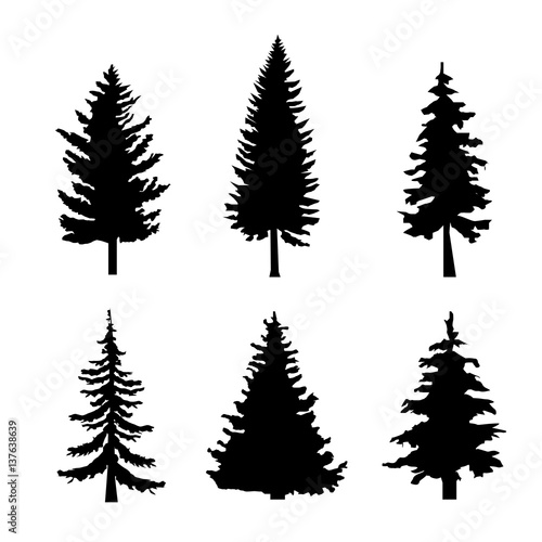 Set Of Black Silhouettes Of Pine Trees On White Background Vector
