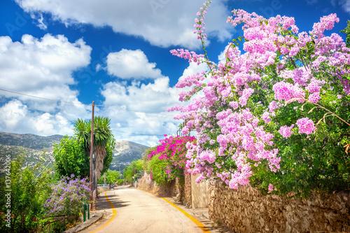 Fototapety, obrazy: Street in Kefalonia, Greece