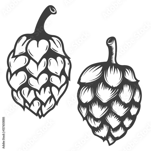 Set of hop icons isolated on white background. Design elements for logo, label, emblem, sign, brand mark. Vector illustration.