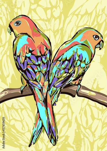 dwie-kolorowe-papugi-na-zoltym-tle
