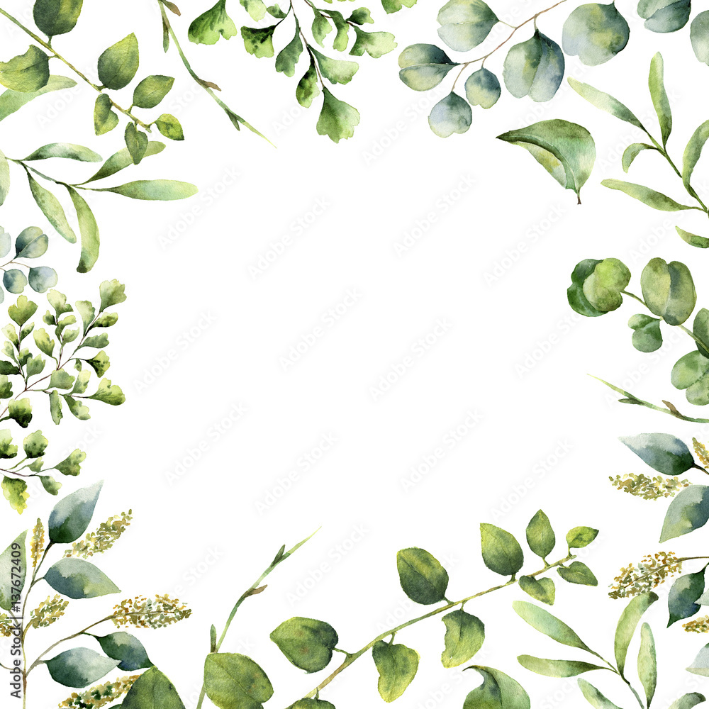 Fototapety, obrazy: Watercolor floral frame. Hand painted plant card with eucalyptus, fern and spring greenery branches isolated on white background. Print for design or background.