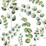 Akwarela wzór z eukaliptusem. Ręcznie malowane kwiatowy ornament z oddziałów srebra dolara, nasion i dziecka eukaliptusa na białym tle. Do tkanin, nadruków lub wzorów - 137672442