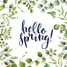 Watercolor Hello Spring. Hand Painted Floral Card With Eucalyptus, Fern And Spring Greenery Branches Isolated On White Background. Print For Design Or Background.