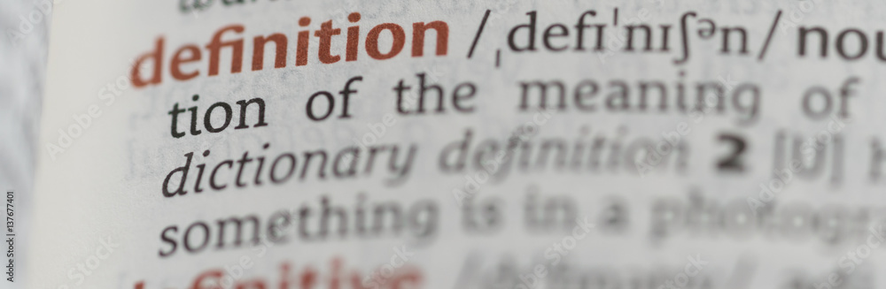 Fototapeta Dictionary showing the word definition