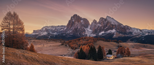 Recess Fitting Deep brown Italy. Dolomites. Autumn morning on the plateau Alpe Di Siusi
