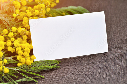 Wall Murals Lily of the valley 8 March background - white card with space for text in the mimosa flowers