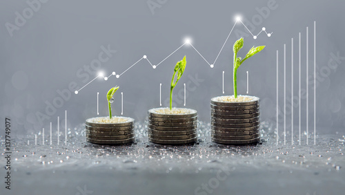 Fotografia  Tree growing on coins, Business save and growing finance