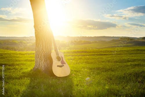 Plakat gitara klasyczna oparta o pień drzewa