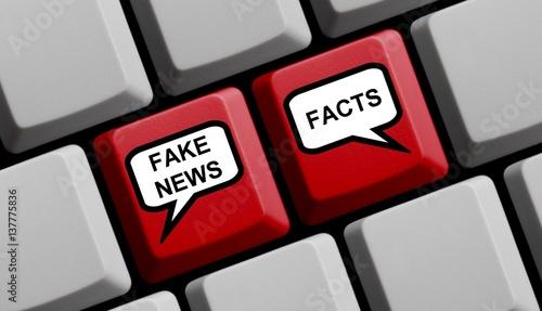 Fake News oder Facts online Fototapeta