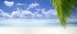 View of nice tropical beach with some palms. banner. extra space for text