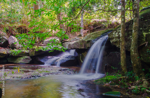 Acrylic Prints Roe Waterfall in deep forest, where there is an abundance of nature.