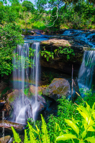 Poster Roe Waterfall in deep forest, where there is an abundance of nature.