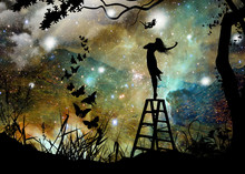 How To Catch A Fairy Silhouette Art Photo Manipulation
