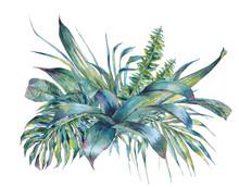 Natural Leaves Exotic Watercolor Greeting Card