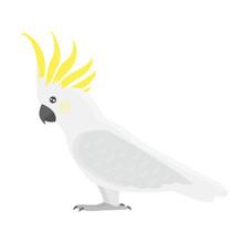Cartoon Tropical Cockatoo Parr...