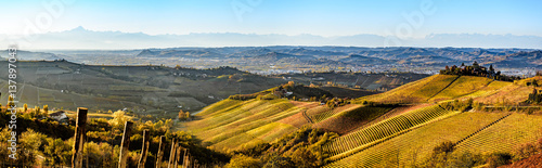 Aluminium Prints Vineyard wide panorama of Langhe region in northern italy, on autumn,unes