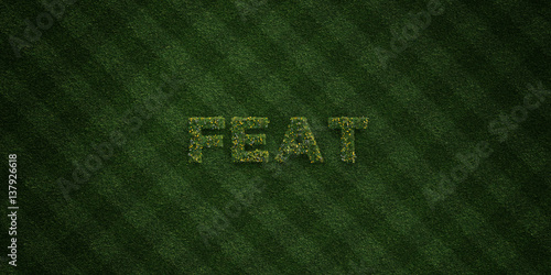 Fotografija  FEAT - fresh Grass letters with flowers and dandelions - 3D rendered royalty free stock image