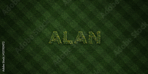 ALAN - fresh Grass letters with flowers and dandelions - 3D rendered royalty free stock image Poster
