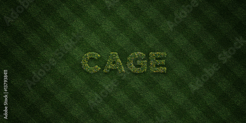 Fotografie, Obraz  CAGE - fresh Grass letters with flowers and dandelions - 3D rendered royalty free stock image