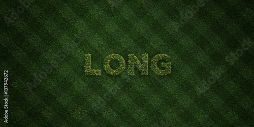 Fényképezés  LONG - fresh Grass letters with flowers and dandelions - 3D rendered royalty free stock image
