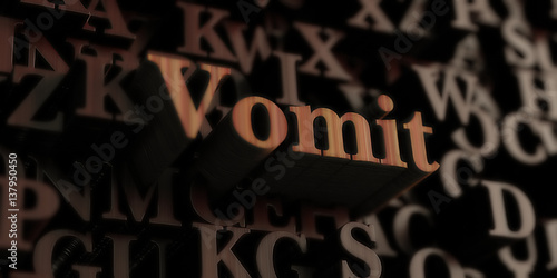 Fotografie, Obraz  vomit - Wooden 3D rendered letters/message