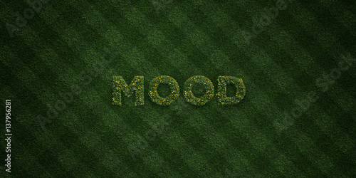 Fotografie, Obraz  MOOD - fresh Grass letters with flowers and dandelions - 3D rendered royalty free stock image