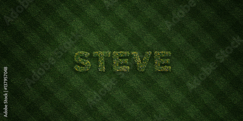 STEVE - fresh Grass letters with flowers and dandelions - 3D rendered royalty free stock image Canvas Print