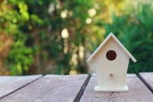 Birdhouse Over Wooden Table Outdoors In The Garden