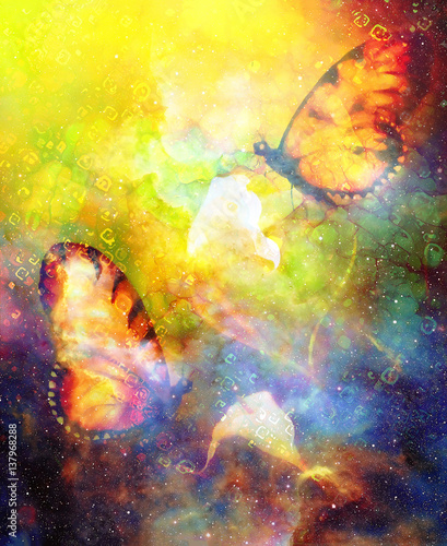 Fotobehang Vlinders in Grunge flying butterfly with cala flower in cosmic space. Painting and graphic design.