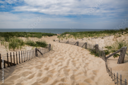 Fotografie, Obraz  Pathway to the Beach in Provincetown, Cape Cod, Massachusetts