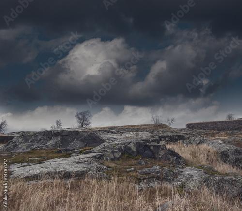 Poster Cappuccino Dark gloomy foggy landscape