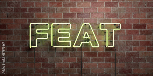 Fotografia, Obraz  FEAT - fluorescent Neon tube Sign on brickwork - Front view - 3D rendered royalty free stock picture