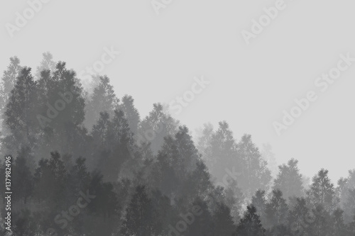 Fotografie, Obraz  Minimalistic wood / background / digital painting