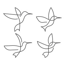 Continuous Line Bird White One...