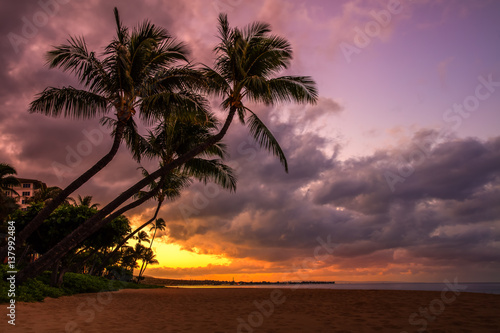 Photo Stands Chocolate brown sunrise with two palm trees